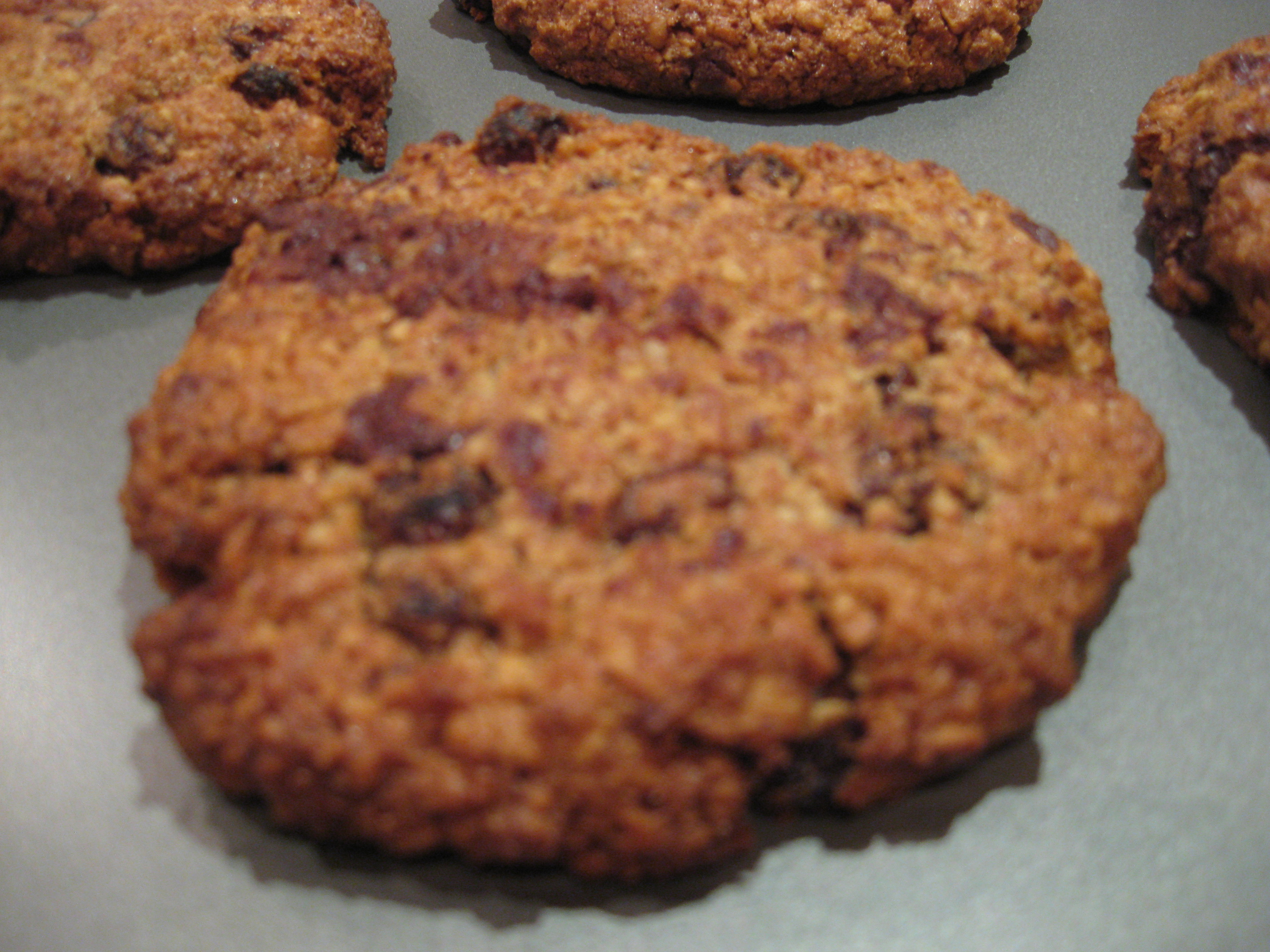 oatmeal_raisin_chocolate_chip_cookie