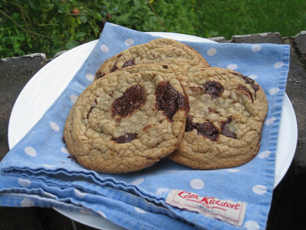 Chocolate Chip Cookie Recipe Metric Measurements