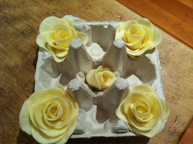 modelling_cocoform_chocolate_roses