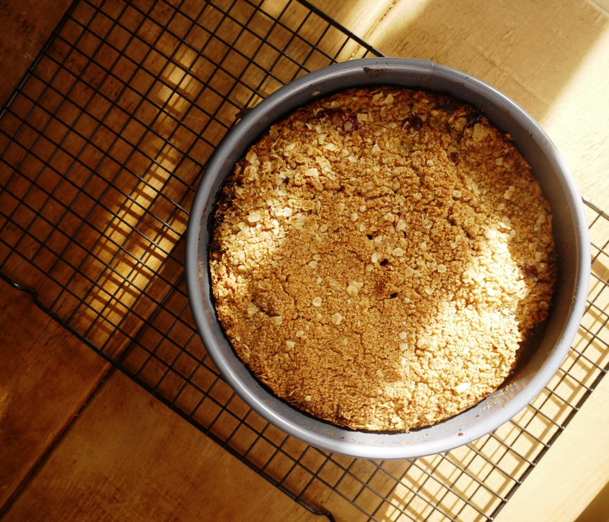 Fig Crumble Cake