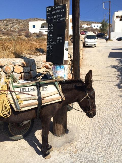Donkey Folegandros