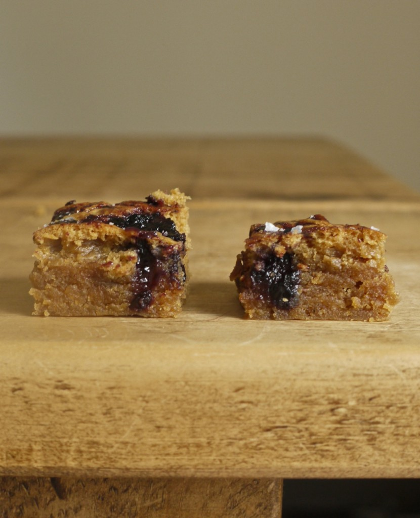Peanut Butter & Blueberry Blondies