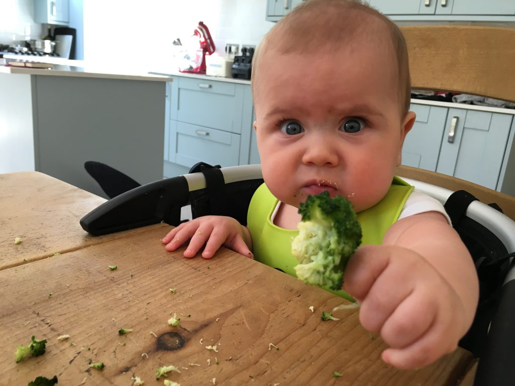 Baby weaning - 6
